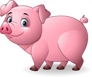 Cartoon pig isolated on white background
