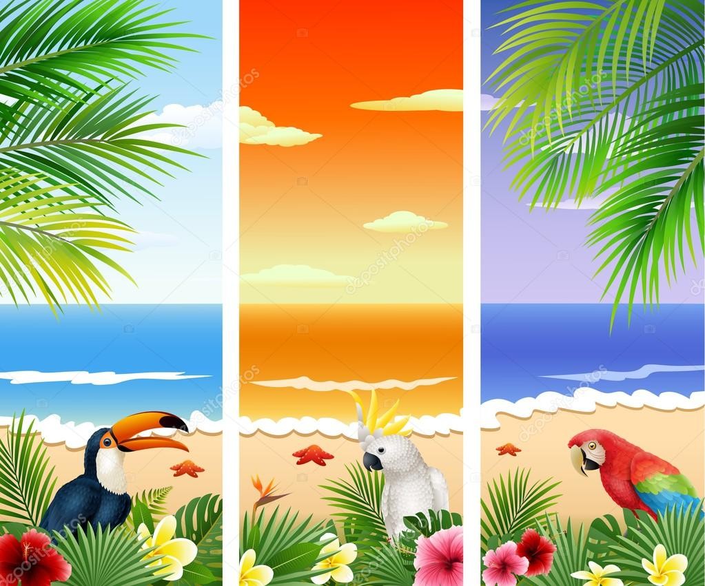 Set of Three tropical beach background