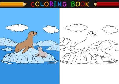 Cartoon seal coloring book