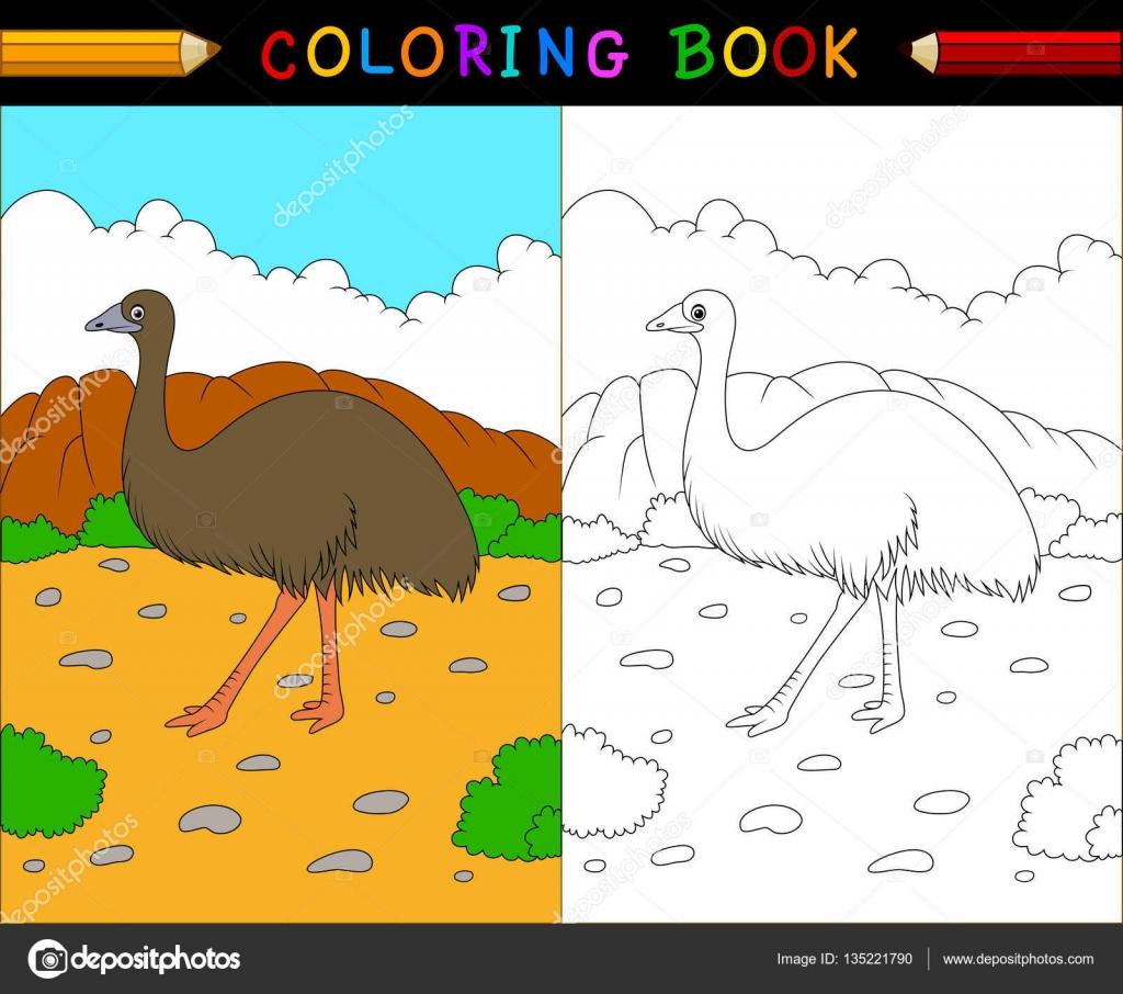 Cartoon-WWU Malbuch, australische Tiere Serie — Stockvektor ...