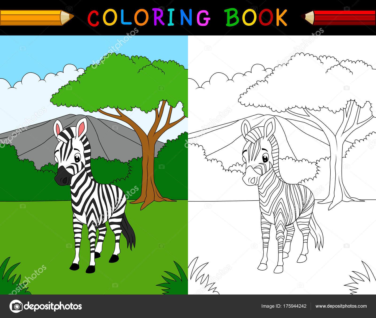 Desenho De Z De Zebra Para Colorir Colorir Com