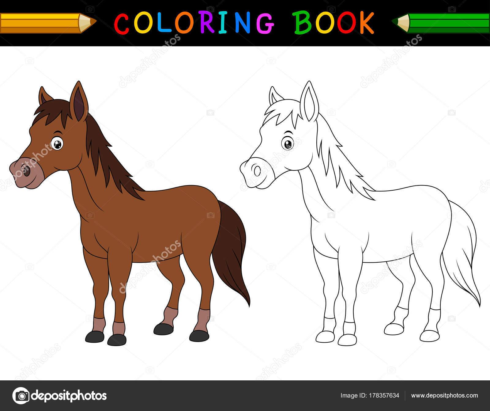 Libro Para Colorear Dibujos Animados Caballo — Archivo Imágenes ...