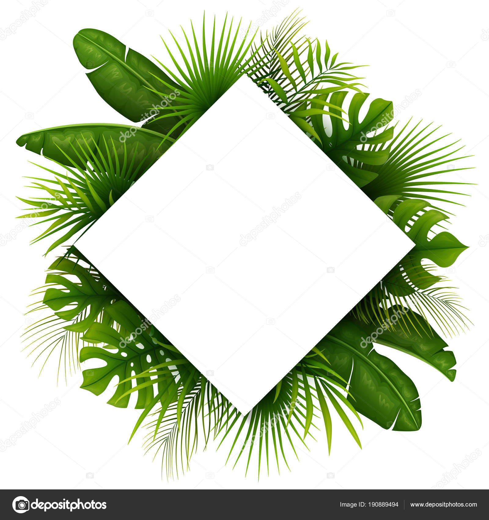 Tropical Green Leaves White Frame Place Text Isolated White Background Stock Vector C Dreamcreation01 190889494 Simple green tropical leaves design seamless pattern exotic pink flamingos, tropical plants and jungle flowers monstera and palm leaves. https depositphotos com 190889494 stock illustration tropical green leaves white frame html