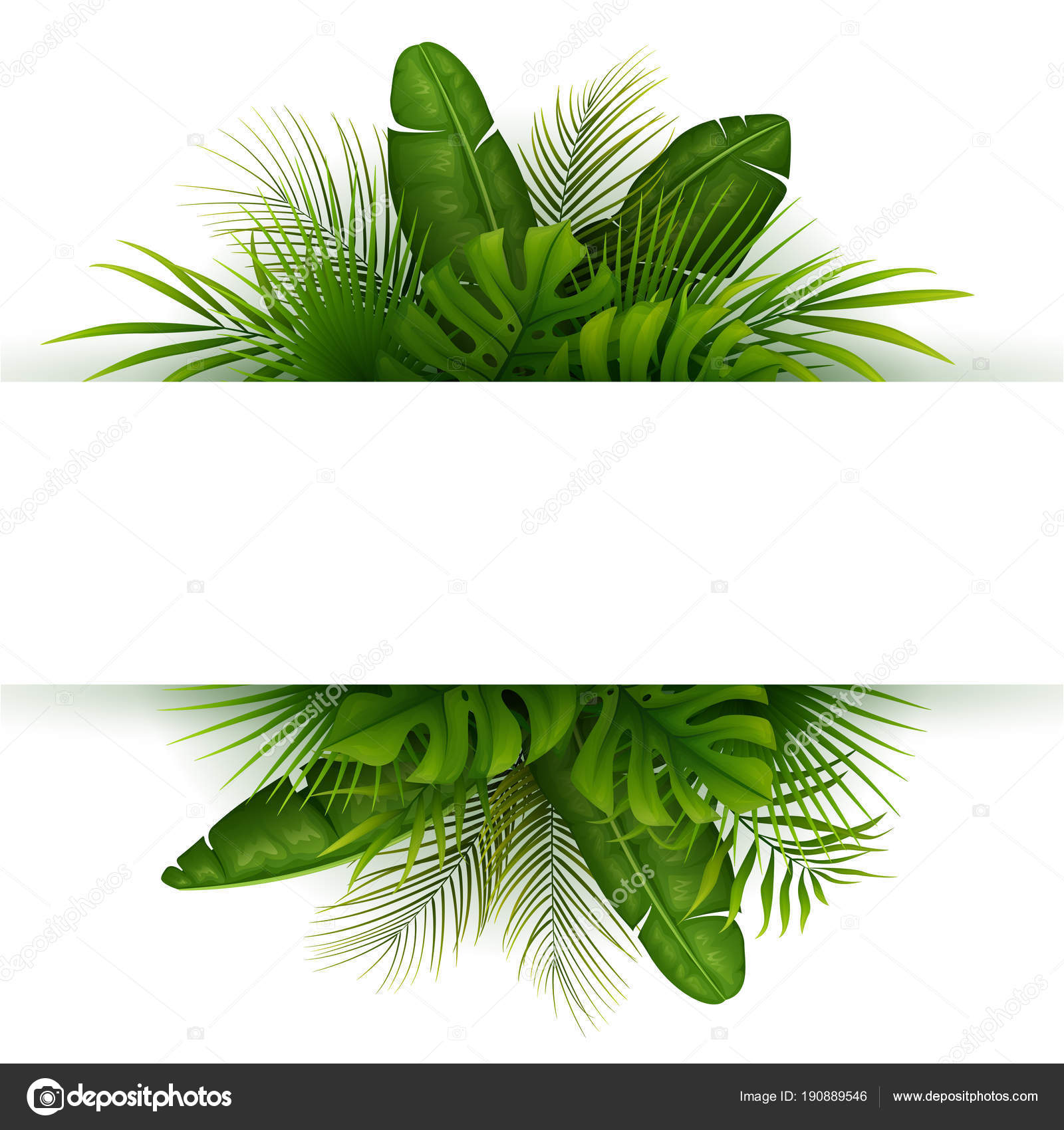 Tropical Leaves Plants Palm Trees Leaves White Background Stock Vector C Dreamcreation01 190889546 The useful tropical plants database contains information on the edible, medicinal and many other uses of several thousand plants that can be grown in tropical regions. https depositphotos com 190889546 stock illustration tropical leaves plants palm trees html