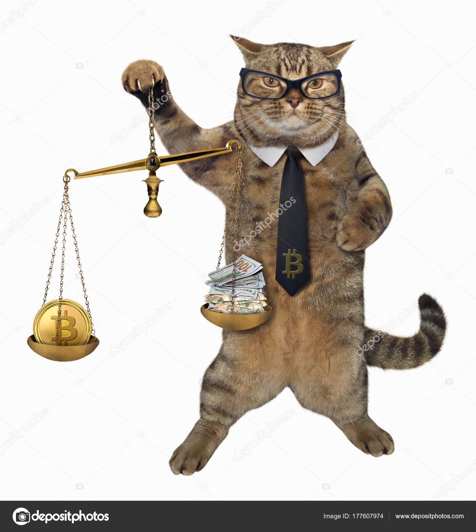 """Résultat de recherche d'images pour """"balance justice chat"""""""