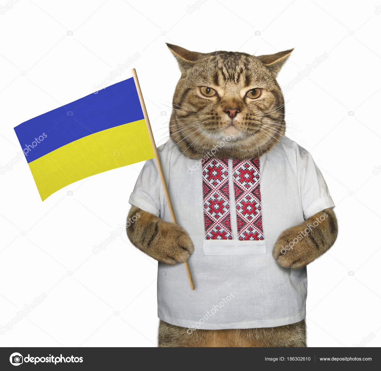 Ukrainian chat