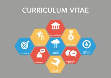 Curriculum Vitae Icon Concept