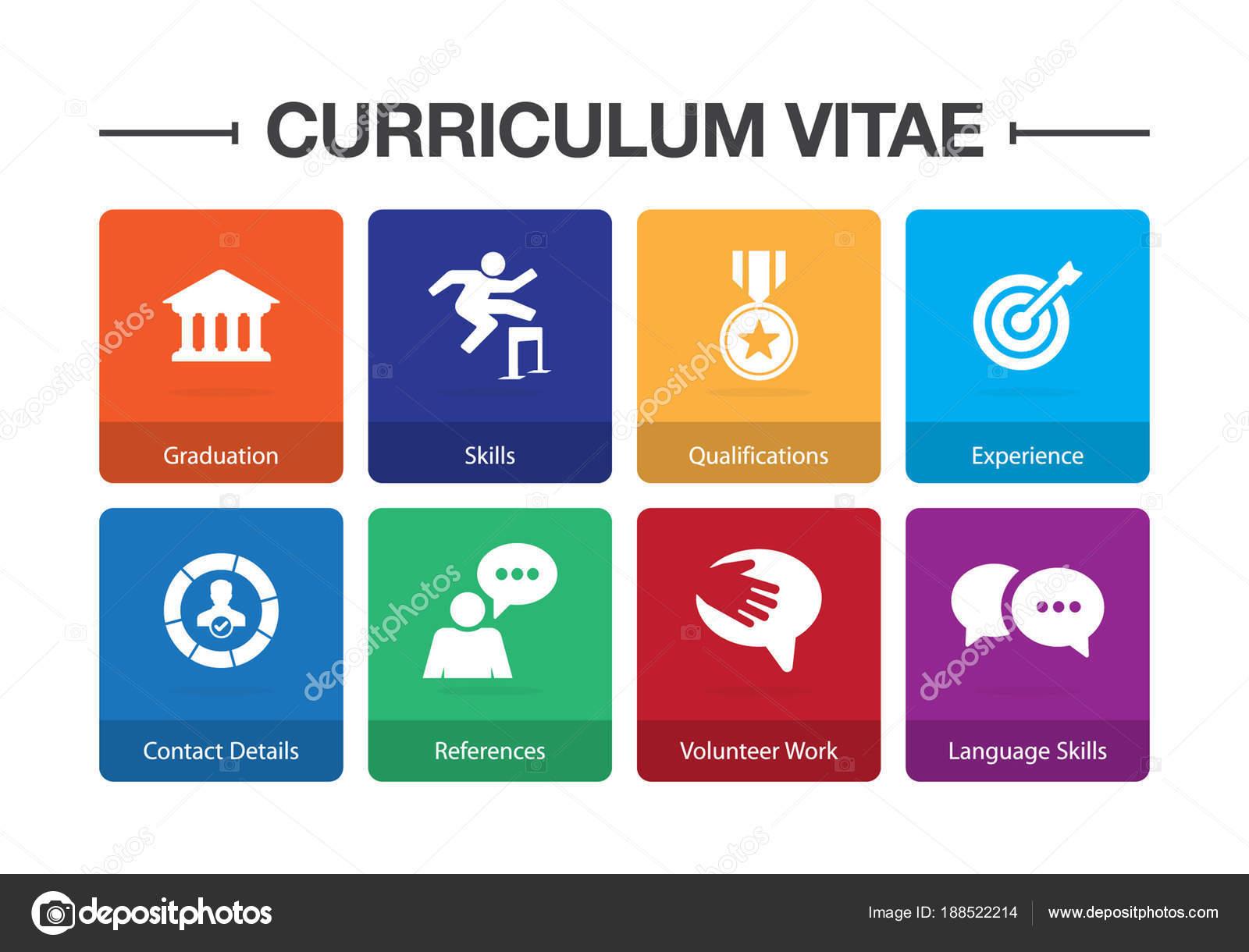 curriculum vitae infographic icon set stock vector