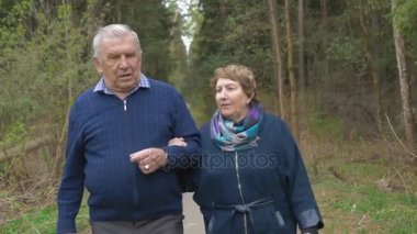 A beautiful elderly couple, walking in the park, talking kindly. Good mood, positive life.