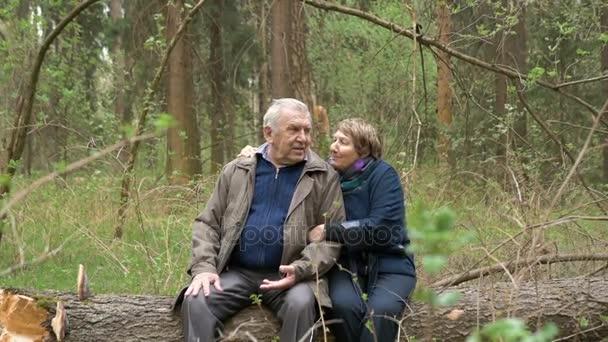 Starší, krásný pár sedí v lese, na řezané dřevo. Něžně hovořit, obejmout, v lásce pohled na sebe. Dobrou náladu.