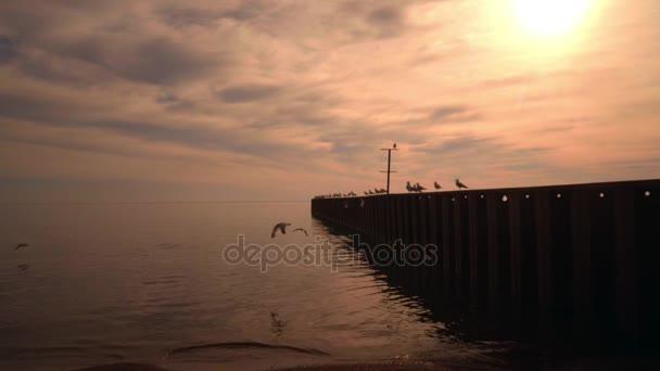 Západ slunce na moři. Západ slunce zlaté moře. Západ slunce moře. Oranžový západ slunce. Moře molo s racky