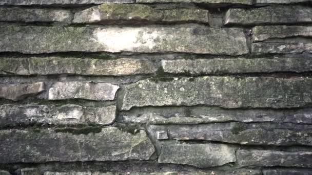 Kamenná zeď pozadí. Dolly záběr kamenné zdi textury
