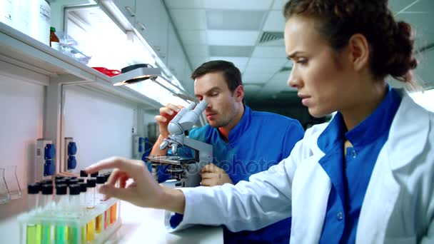 Scientist team working in laboratory. Science research group working in lab