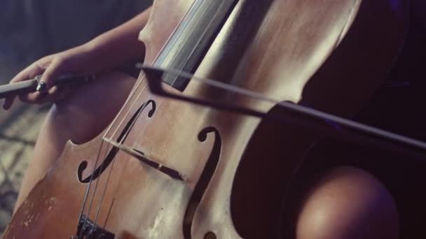 Cellist mit Violoncello. klassisches Musikinstrument