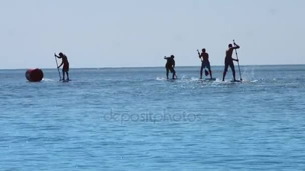 Group surfer man stand up paddle board and riding on sea at summer vacation