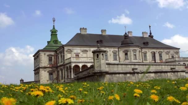 Fiabesco Palazzo sulla collina verde. Vecchia architettura storica