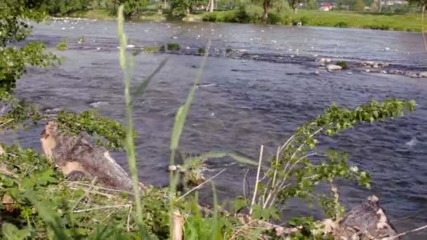 Krásné řeky vodní proud krajina. String proud řeky. Rychle tekoucí vody