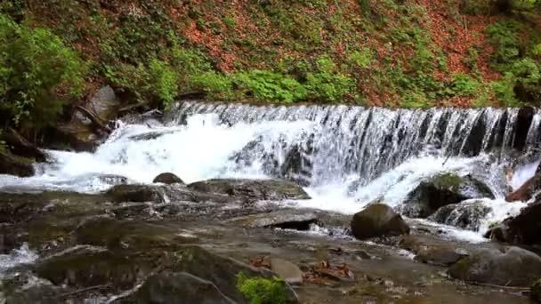 Horský vodopád v hlubokém lese. Proud vody na horské řece