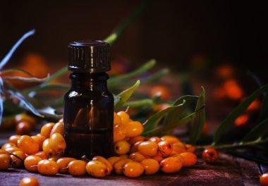 Essential oil of sea buckthorn