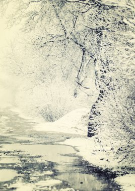 Winter landscape, first snow on tree branches