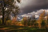 Podzimní krajina červeno žlutá