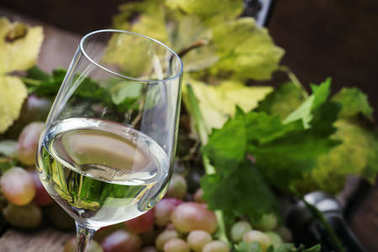 Dry white wine and grapes