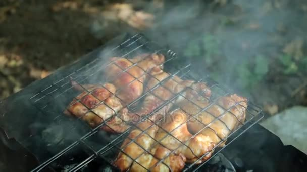 Piknik, grillsütő, grill. A parazsat a sült csirkeszárny