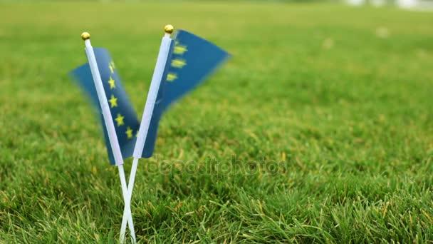 European flag and soccer ball. Flag of the European Union, soccer ball on the grass.