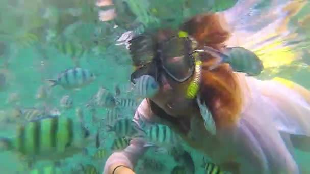 Ragazza fare il bagno nel mare con i pesci. Immersioni subacquee nelle maschere. Phangan, Thailandia.