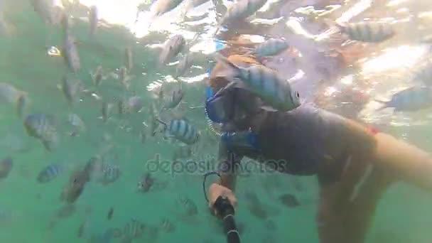 Bambino fare il bagno nel mare con i pesci. Immersioni subacquee in maschere