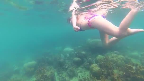 Ragazza fare il bagno nel mare con i pesci. Immersioni subacquee nelle maschere. Phangan, Thailandia