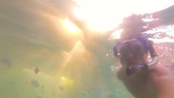 il ragazzo si bagnano nel mare con i pesci. Immersioni subacquee nelle maschere. Luce solare attraverso lacqua. Phangan, Thailandia