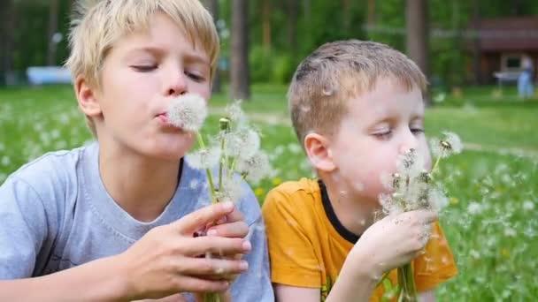 šťastné děti, foukání pampelišky v parku, zpomalené. Rodinná dovolená v parku