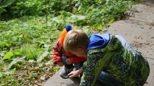 Two children in the Park examine plants and insects through a magnifying glass. Study of the outside world, pre-school and school education