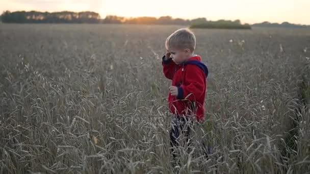 Der Junge rennt am Weizenfeld entlang, zur Zeit des Sonnenuntergangs. Sport im Freien