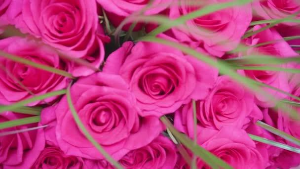 Nádherné květy červených růží. Kytice květiny close-up