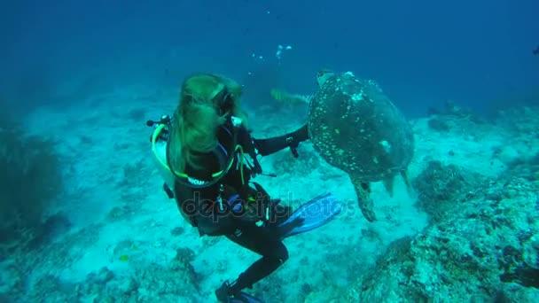 Young woman scuba diver swim next a Hawksbill sea turtle (Eretmochelys imbricata) in blue water,