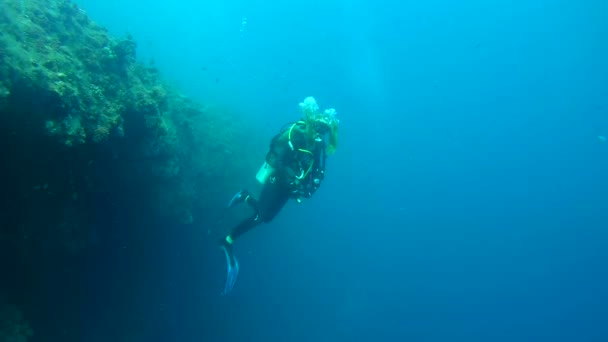 Young woman scuba diver views of a coral reef,