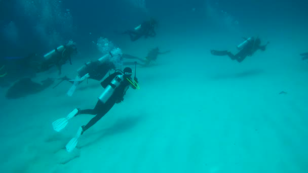 Un gruppo di subacquei nuota sopra il fondo sabbioso, oceano indiano, Maldive
