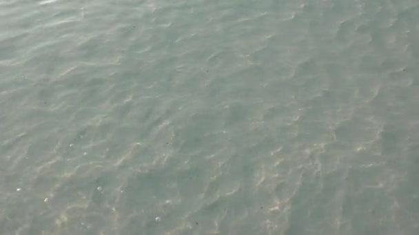 Písečné dno pod hladinou vody v mělkých vodách, Indický oceán, Maledivy