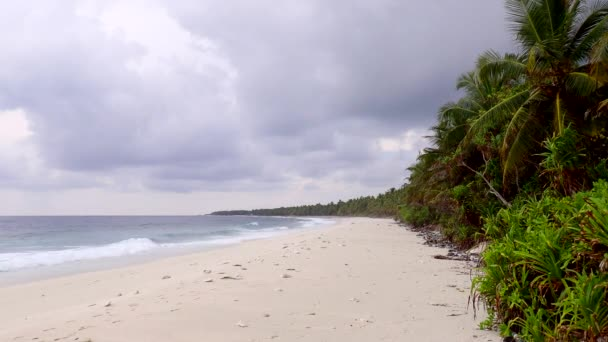 Sandy beach with palm trees in the island Fuvahmulah, Indian Ocean, Maldives