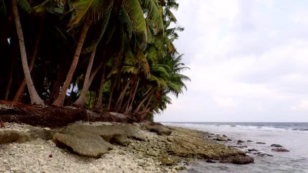 Opuštěné tropická pláž s palmami a malé skály