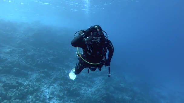 INDIAN OCEAN, MALDIVES, ASIA - MARCH 2018: Male scuba diver slowly floats in the blue water and tries on a sea star on his head - Indian Ocean, Maldives