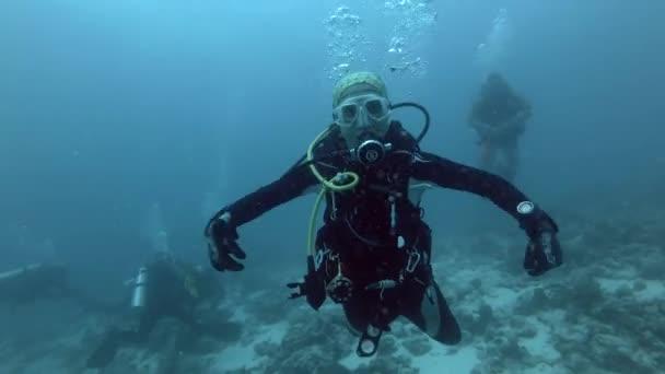 Indischer Ozean, Malediven, Asien - März 2018: Taucherin porträtiert Mantarochen - Indischer Ozean, Malediven