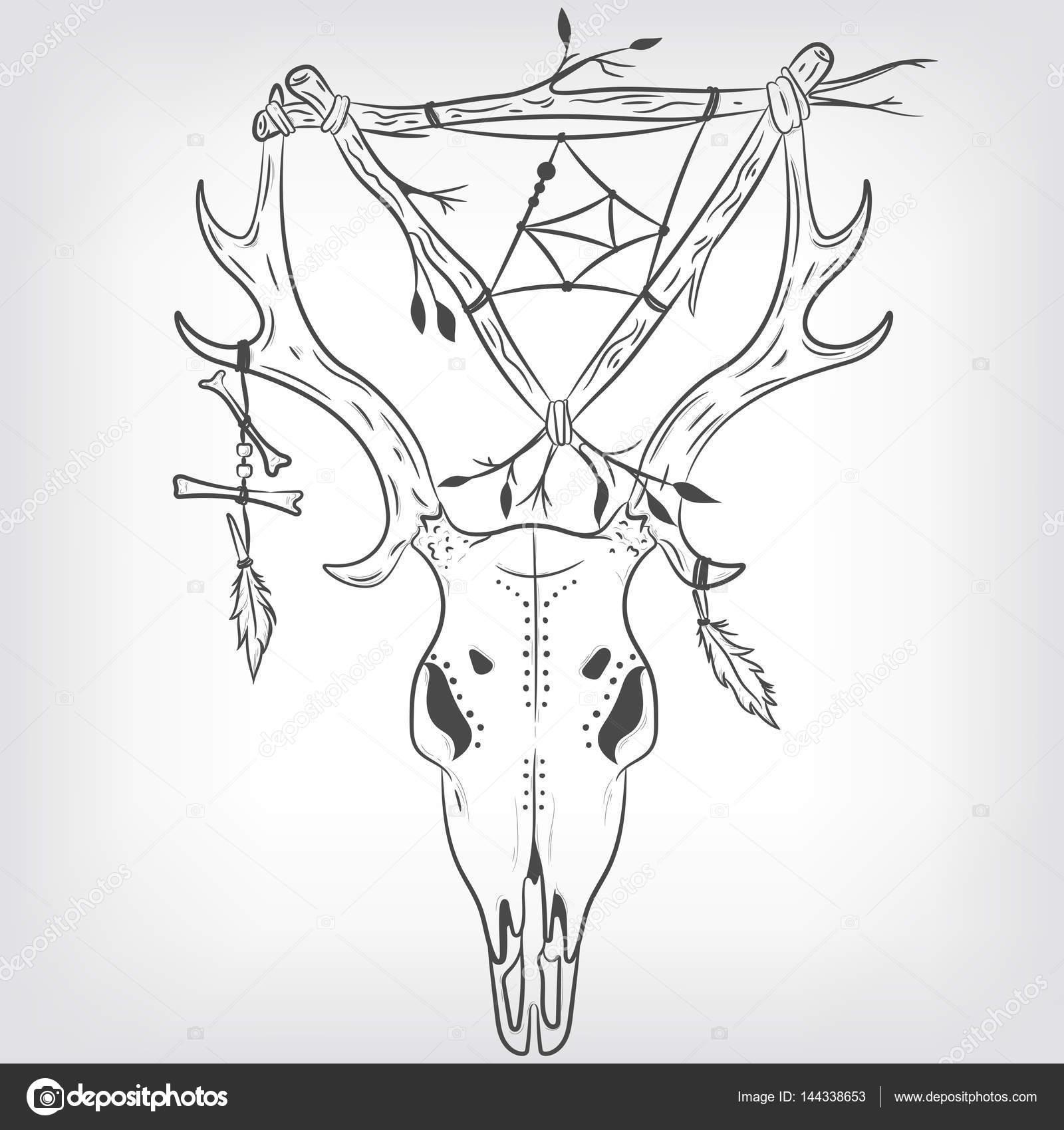 Cráneo de ciervo y el cazador de sueños. Vector de impresión ...