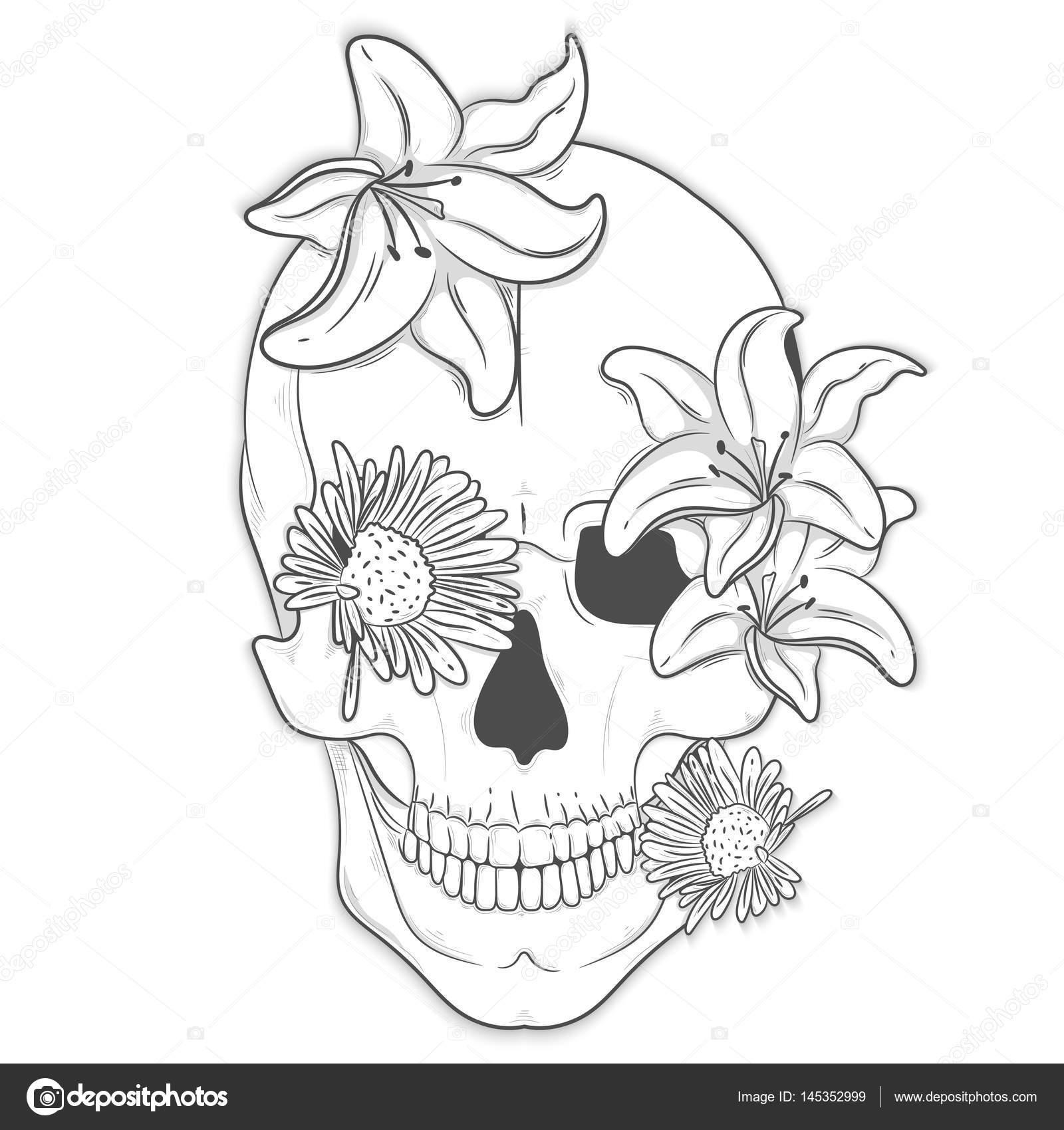 Cráneo humano con flores. Ilustración de Vector, impresión — Vector ...