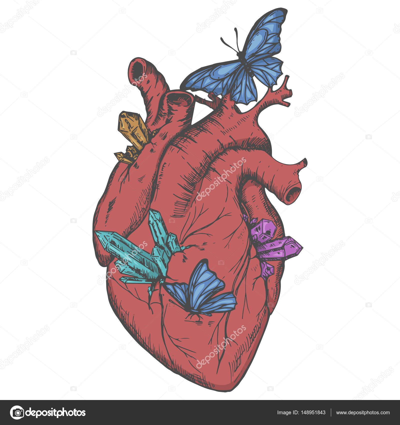 Corazón de ilustración con cristales y mariposas — Vector de stock ...