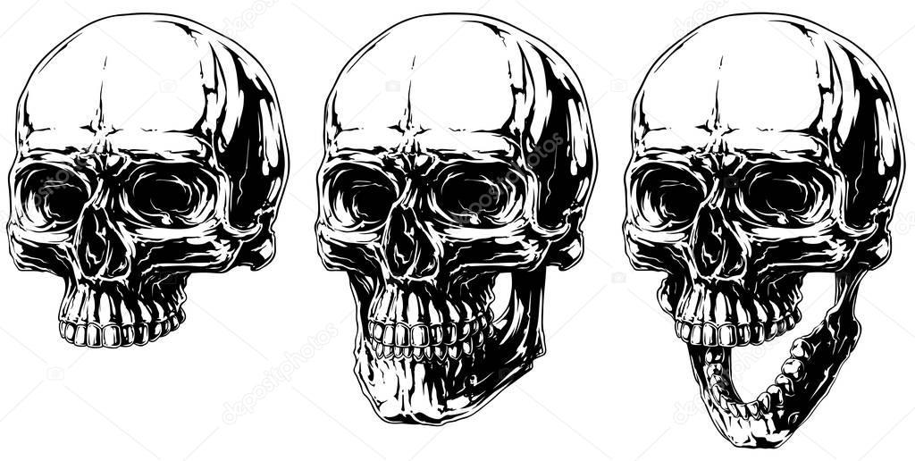 Cool detailed horror human skull graphic set