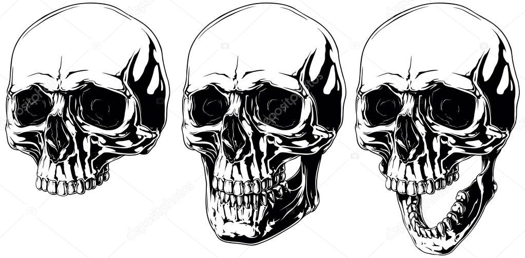 Detailed scary graphic human skull with black eyes set