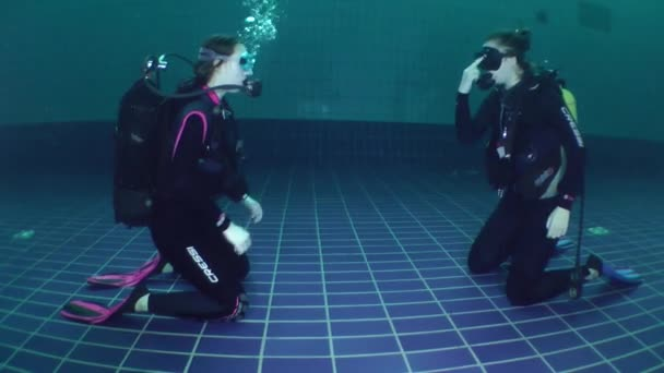 Diving course in the pool.